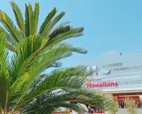 今から夏気分! 『ハワイアンズ』早めがお得の「早フラ割」に注目