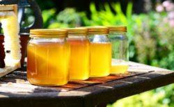 はちみつと酵母と水だけのお酒「蜂蜜酒(ミード)」が最高金賞を受賞!