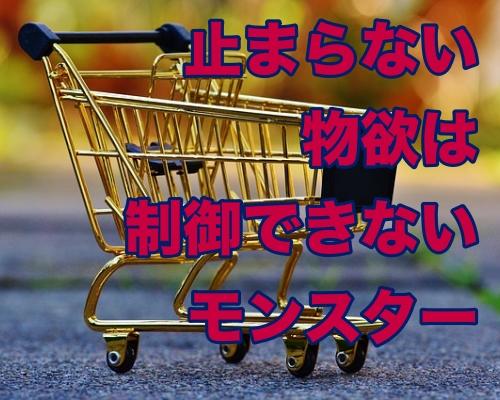 「欲しいものを買わずに済む方法」は我慢するだけでは間違っている