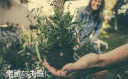 お庭のサブスク!短時間植物管理サービス「まちぐり」事前登録募集中!