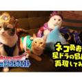 """2月22日は「猫の日」、ドラゴンクエストの世界を""""ネコ勇者""""が大冒険!"""